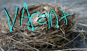 empty-nest_shutterstock_55599988