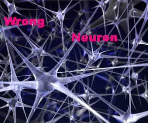 Neurons_img_0