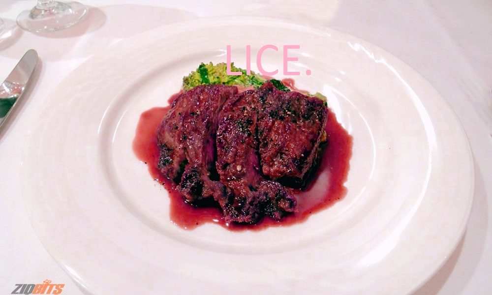 sarcoplasm-in-steak-juices