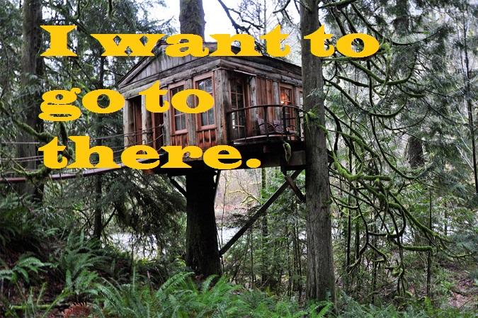 quaint-treehouse-4