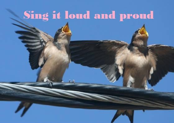 birds-singing1.jpg.w560h395